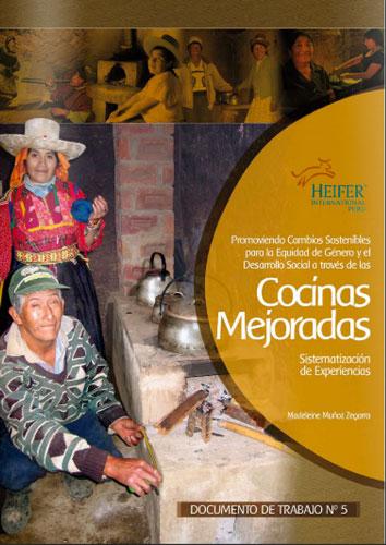 Promoviendo Cambios sostenibles para la Equidad de Género y el Desarrollo Social a través de las Cocinas Mejoradas