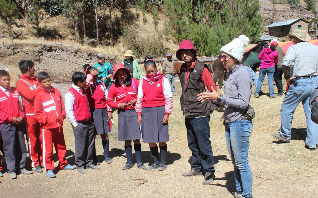 Campaña de sanidad en equinos en Cusipata, Cusco. 13-15 de agosto del 2019